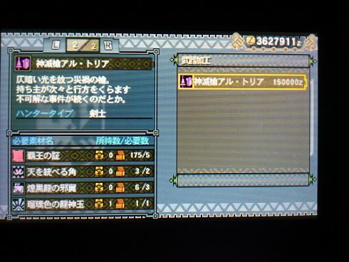 DSC_04242.jpg
