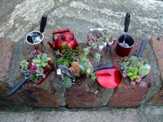 ミニチュア多肉寄せ植え~ミニシェフセット~縁石にのせて飾ってみました~♪2012.09.21
