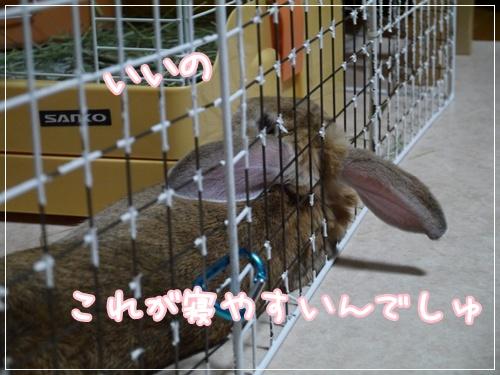 20121114180720b9c.jpg