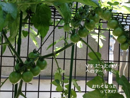20120626191744bc2.jpg