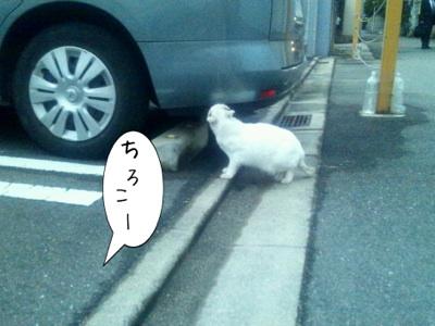 fc2blog_20121217181958ae0.jpg