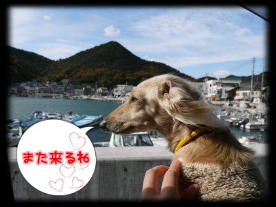 20131203201252ff8.png