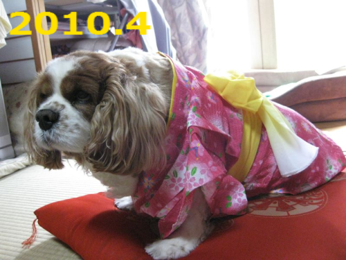 20120622213208a27.png