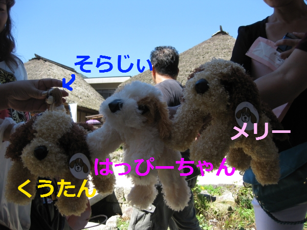 IMG_2509.png