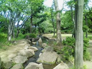 稲田公園_01