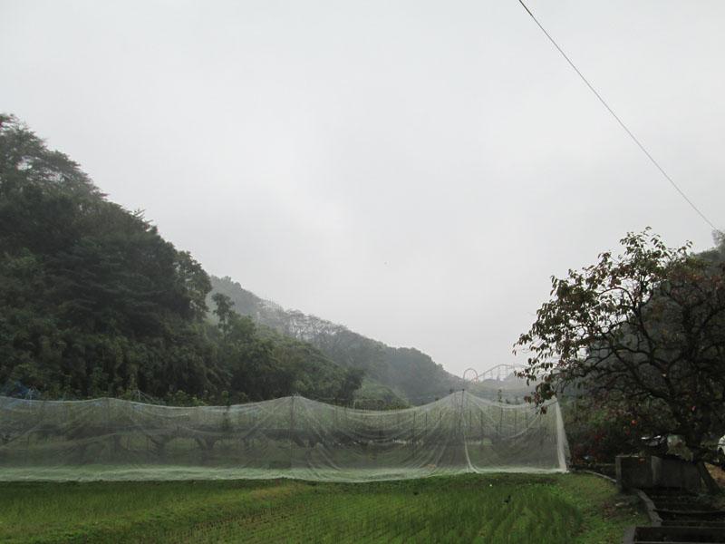 201211101651166a6.jpg