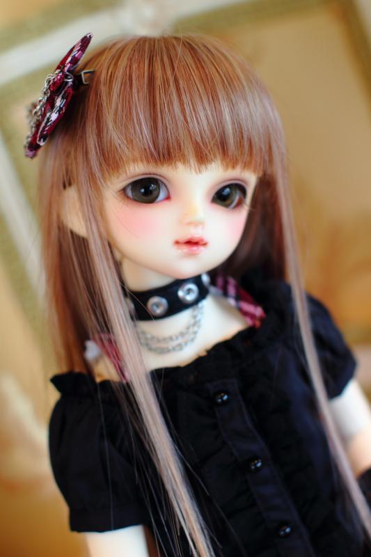 _MG_1553.jpg