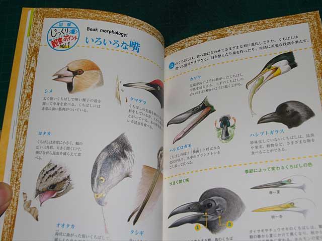 book201211072.jpg