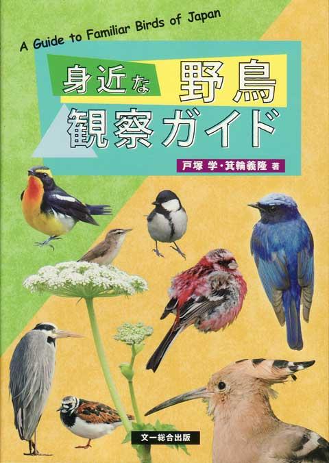 mijikanayacho20121102.jpg