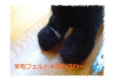 黒トイプー足