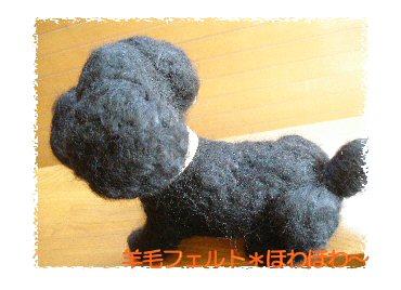 黒トイプーちゃん2