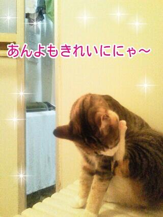 fc2blog_20120523201549fec.jpg