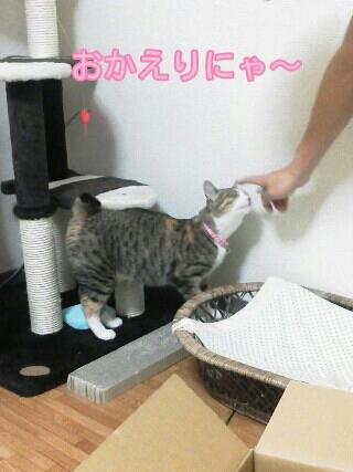 fc2blog_20120531181535157.jpg