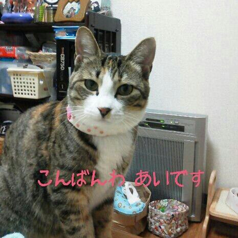 fc2blog_2012071123280047b.jpg