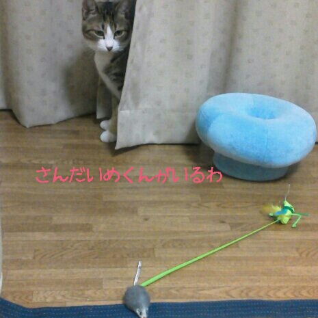 fc2blog_20120711232923a68.jpg