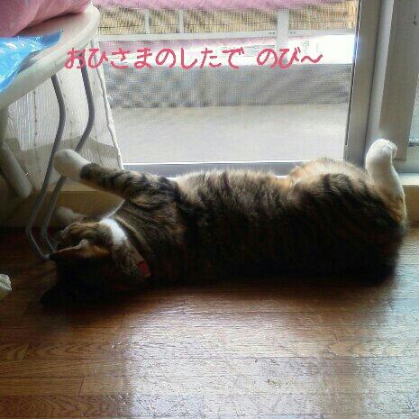fc2blog_20120714132139c1c.jpg