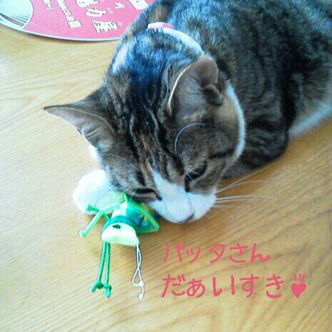 fc2blog_20120715221028eda.jpg