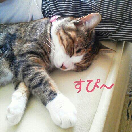 fc2blog_20120716095335a6b.jpg