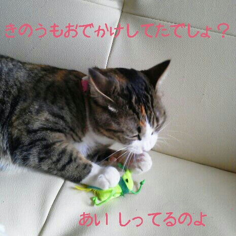 fc2blog_20120722002824860.jpg
