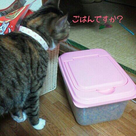 fc2blog_20120724210041620.jpg