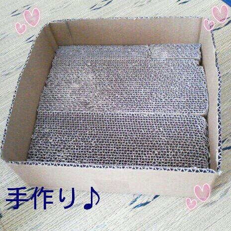 fc2blog_20120730225426fb5.jpg