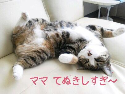 fc2blog_20120905202842deb.jpg