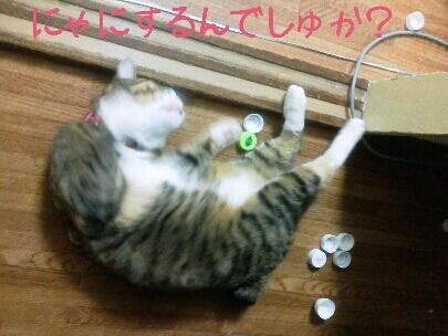 fc2blog_20120914001103f2b.jpg