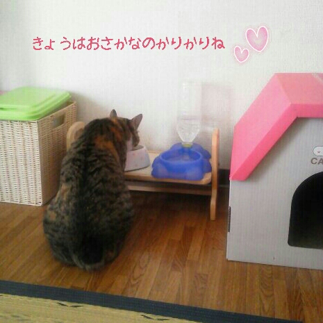 fc2blog_20120915082539ce2.jpg