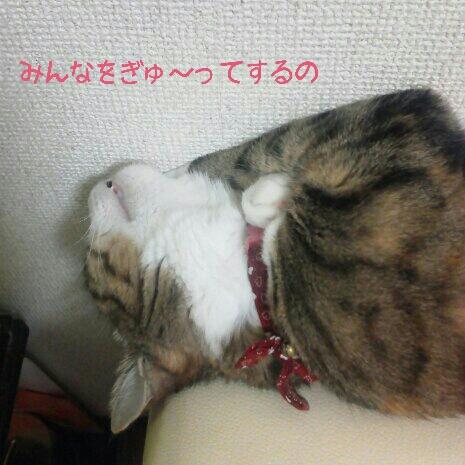 fc2blog_201209182148117e9.jpg