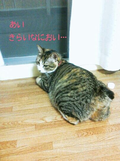 fc2blog_20120922113558e96.jpg