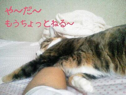 fc2blog_20120923130943a59.jpg