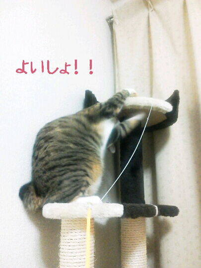fc2blog_20120924081408b34.jpg