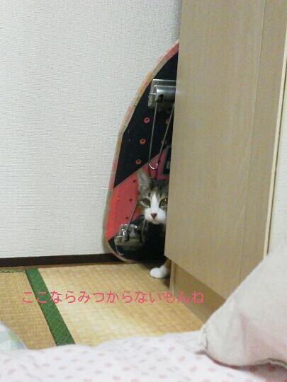 fc2blog_20121122235257c8b.jpg