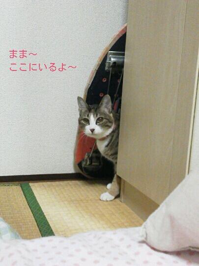 fc2blog_20121122235545c74.jpg