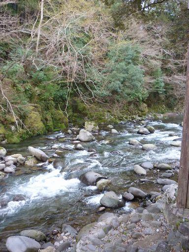 谷川の湯 あせび野(2009年3月)