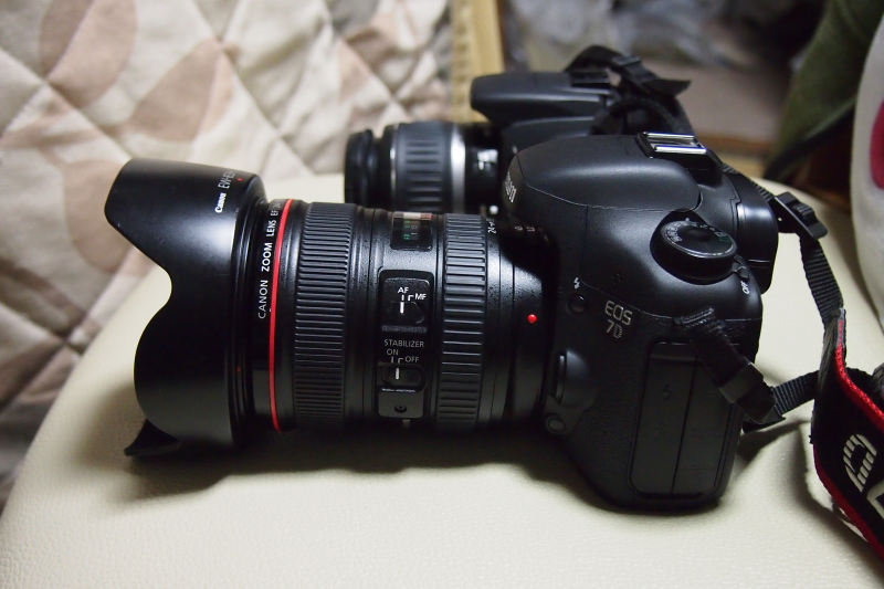 PA200337.jpg